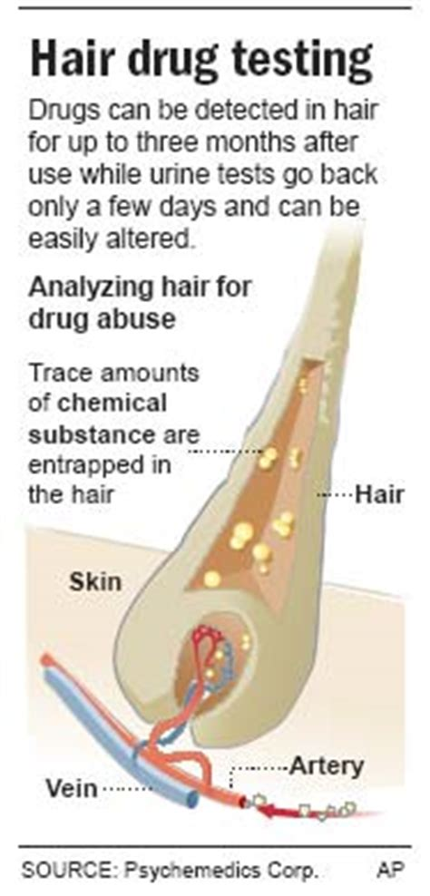drug testing on hair for employment picture 9