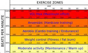 how can i find my fat burning zone picture 13
