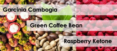 rasberry ketones and green coffee bean for fatloss picture 11