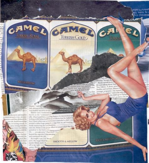 camel smoke login picture 3
