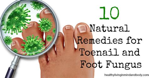 tea tree oil treatment for nail fungus picture 7