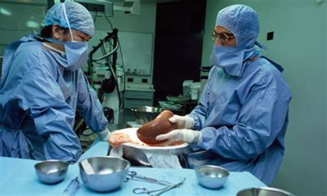 liver transplant hospitals in new jersey picture 4