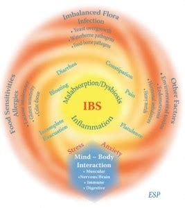 cheap digestive science ibs relief system picture 23