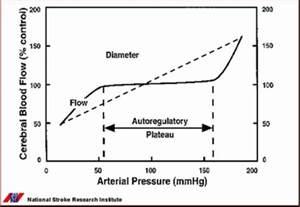 Cerebral blood flow autoregulation picture 2