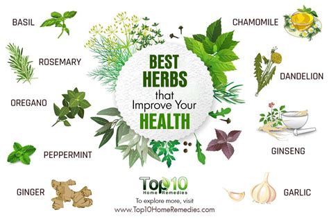 herbal cold remedies picture 1