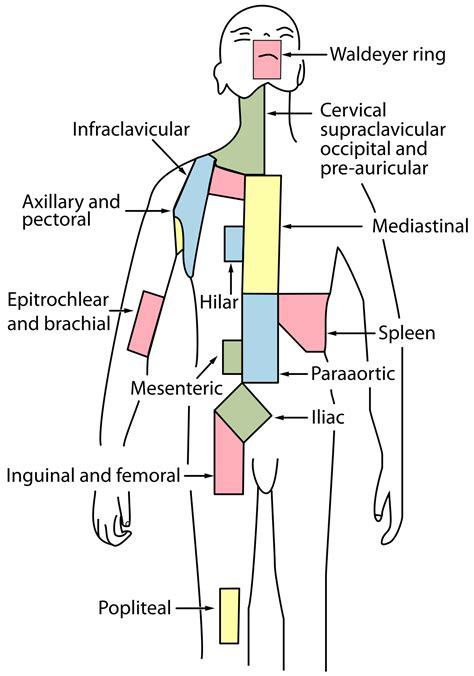 prutas para sa thyroid symptoms picture 2