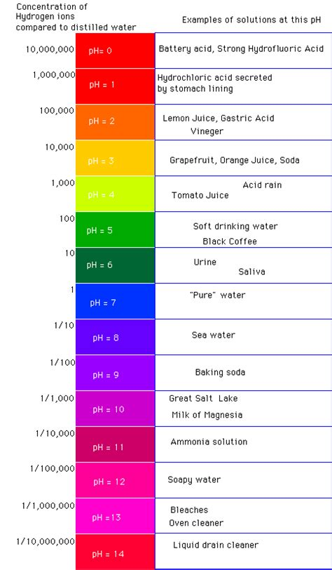 food and the acid-alkali balance of the body picture 9
