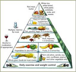 2009 dietary guidelines picture 6