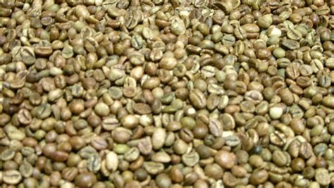 can green coffee beans give u a bladder picture 11