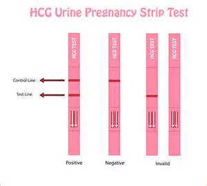 human growth hormone urine test picture 3