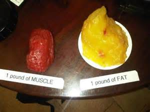 dose muscle gain case weigh picture 15