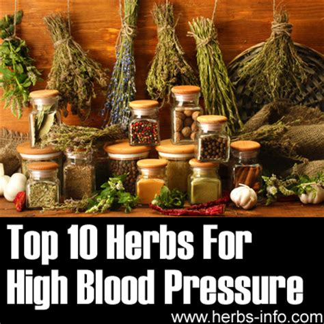 herbal for high blood pressure from india picture 9
