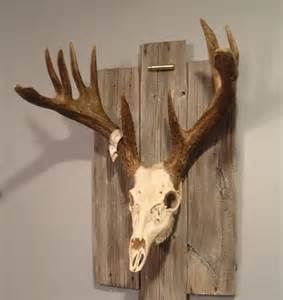 what happens when you stop using deer antler picture 12