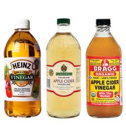 aple cider vinegar and weight loss picture 5