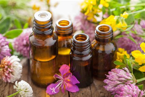 what is the best essential oil for tailbone picture 5