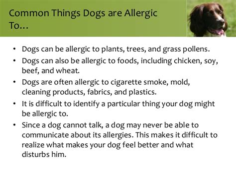 can you be allergic to tobacco smoke picture 5