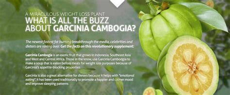 does garcinia cambogia effect your blood picture 12