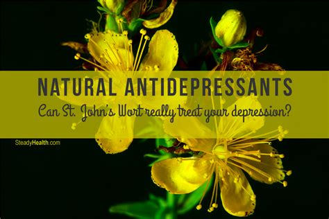 herbal antidepressants picture 1