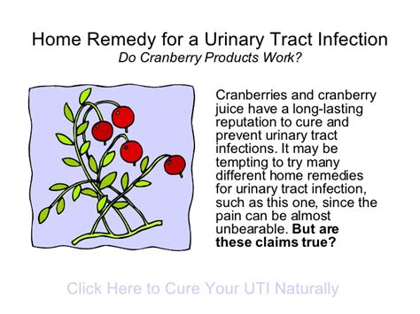 can you get a uti from a yeast infection picture 5