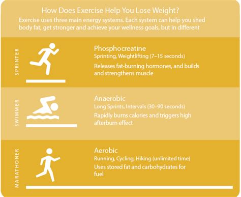 aerobics or resistance excercises for weight loss done daily picture 15