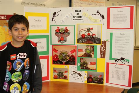 egg s s h science fair picture 7