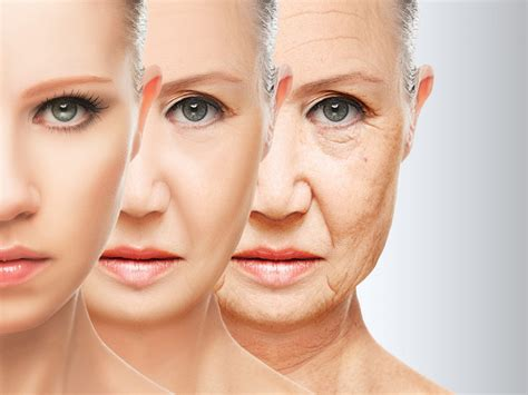 the effects of ageing on collagen and flexibility picture 4
