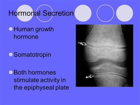human growth hormone 17 year old picture 7