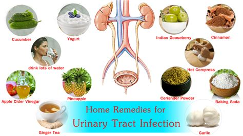 bladder infections how to cure picture 13