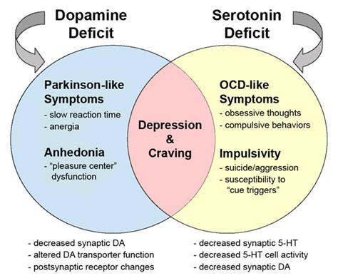 Dopamine serotonin mountain states health picture 3