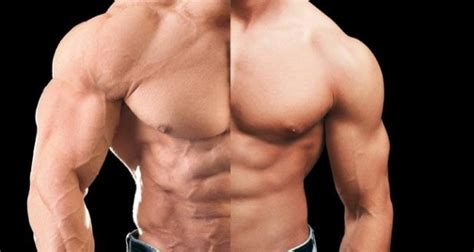natural hgh testosterone picture 7