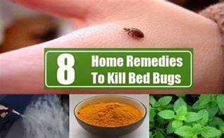 bed bug relief picture 2