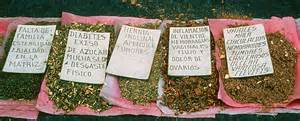 Hispanic herbal tea picture 10