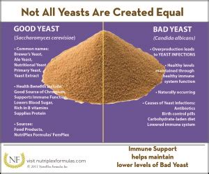 what leads to overproduction of yeast picture 1