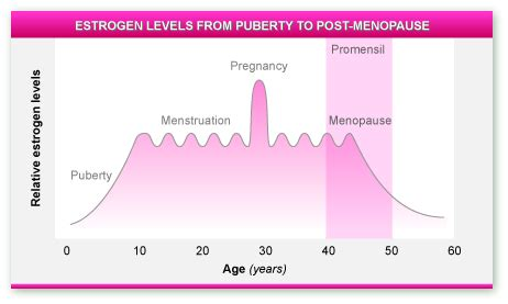 testosterone levels while pregnant picture 2