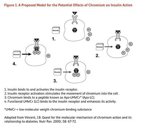 chromium + liver disease picture 3