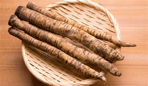 does burdock root detoxify the blood picture 12
