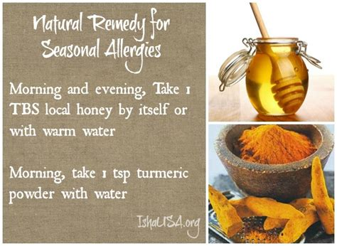 herbal remedies for allergies picture 11