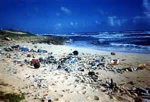 marine debris picture 1