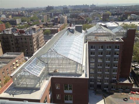nexus greenhouse picture 2