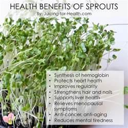benefits of alfalfa picture 15