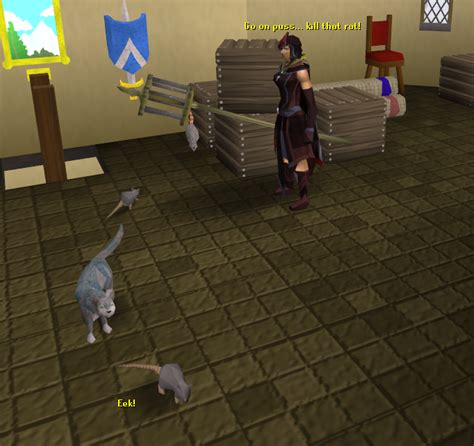 where can you find a sleeping on runescape picture 5