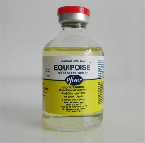 testosterone enant equipoise cycle picture 3