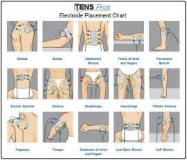 tens unit electrode placement sexual disfunction picture 14