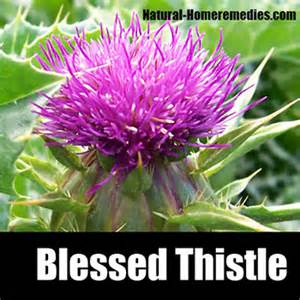 blessed thssele effect on men picture 7
