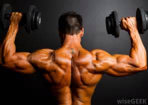 what is the definition of muscle strength picture 13