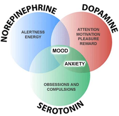 natural norepinephrine inhibitors picture 1