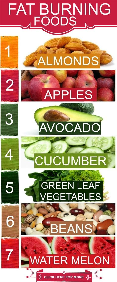 fat burning diet picture 15