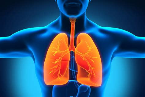 Cool...that will workbacterial lung infection picture 18
