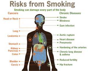 facts abput why you shouldn't smoke picture 6