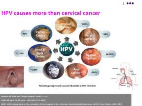 cervical cancer and herpes picture 1